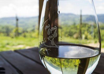 ワイン,種類,選び方,初心者